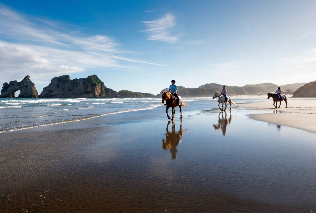 day 3_cape farewell horseriding